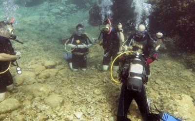 Écoles & cours de plongée sous-marine au Québec