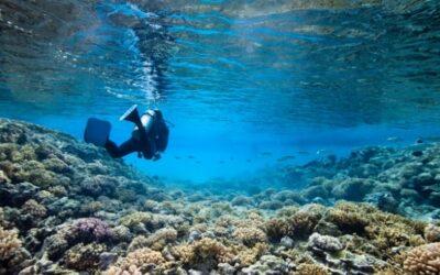 Choisir une assurance-voyage qui couvre la plongée