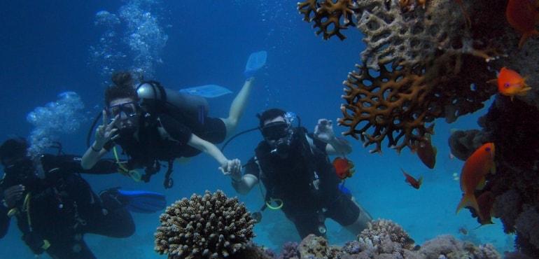 plongeur débutant