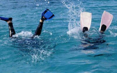 Comment remplir son carnet de plongée?