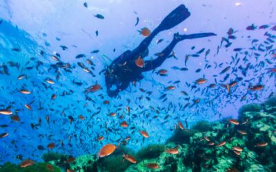 Plongée sous-marine en Thaïlande